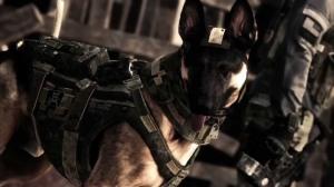 COD-DOG2